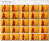 http://img249.imagevenue.com/loc196/th_76582_Showerorgasm.flv_thumbs_2012.05.17_20.11.24_123_196lo.jpg